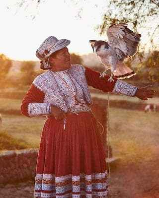 Lady in traditional Peruvian dress with a falcon landing on her outstretched arm