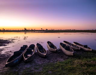 Dawn Safaris, Okavango Delta