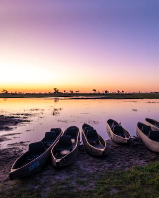 Canoes at dawn in the Okavango Delta