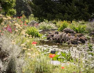 Chelsea Physic Garden Tour