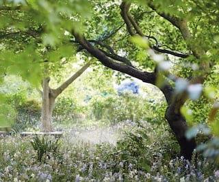 Belmond Cadogan gardens