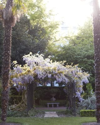 Ironwork arch coated in blooming wisteria, leading to a path beyond