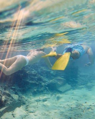 cenote snorkeling in the yutacan peninsula, mexico