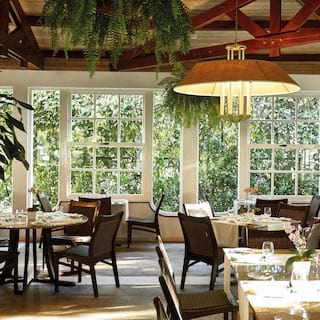 Stylish grill restaurant with hanging plants from wooden ceiling beams