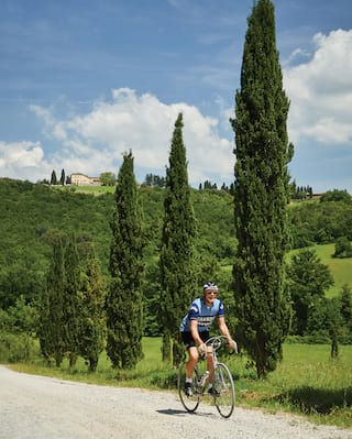 Man on a racing bike cycling along a driveway lined with cypress trees