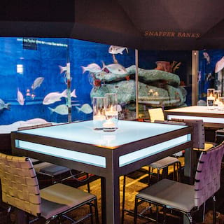 Square underlit dining tables beside floor-to-ceiling fish tanks filled with fish