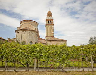 Antique Wineries of Venice