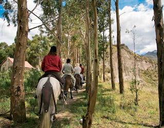 Peruvian Paso Horse Riding, Colca Canyon