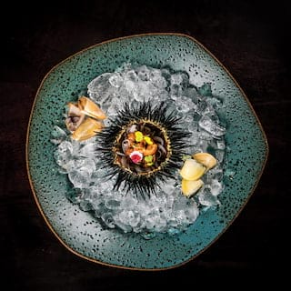 Birds-eye-view of a sea-urchin dish on a teal clay plate