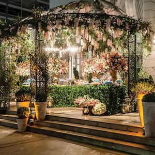 Stepped veranda in evening light with a wisteria-coated ironwork pergola