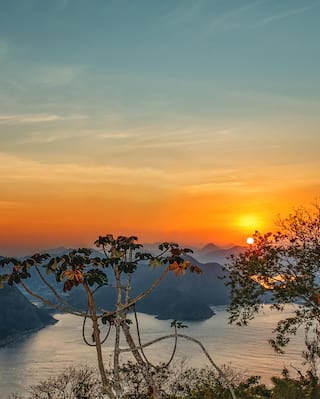View of sunset from Rio's iconic Sugarloaf mountain, through lush foliage