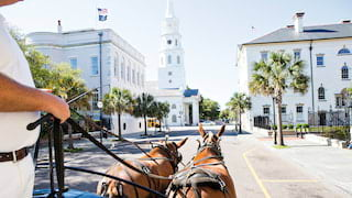 View of a colonial style Charleston street from a horse-drawn carriage