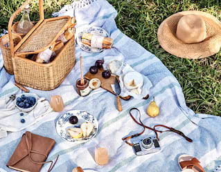 Picnic spread laid out on a blanket