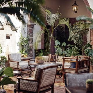 Shaded open-air lounge area dotted with armchairs and palm plants