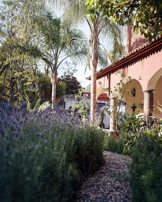View of lavender beside a garden path, leading to a hotel cloister