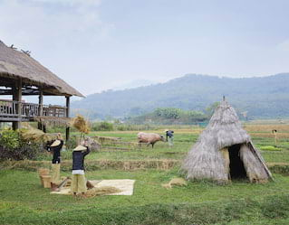 Laotian Farm Experience
