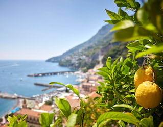Amalfi Lemon Tour