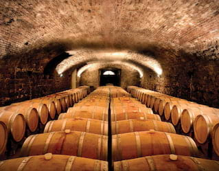 Antique Wineries of Venice