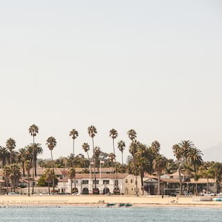 View of a sandy beach lined with palm trees from across the water