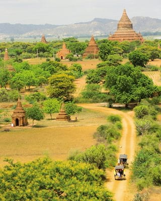 Intricate stone pagodas rising among trees on a grassy plain