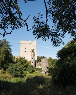 Medieval stone castle surrounded by trees with a tower stretching into the sky