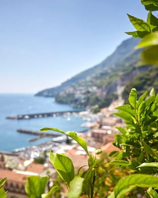 Lemon Tour in Amalfi Coast