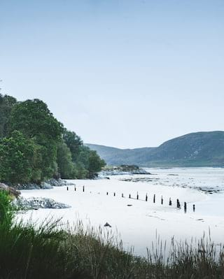 A beach with silver sands lined by lush trees on a mountainous lochside