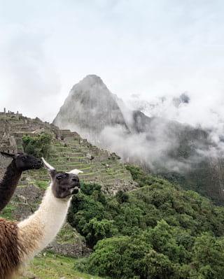Machu Picchu-Touren in Peru