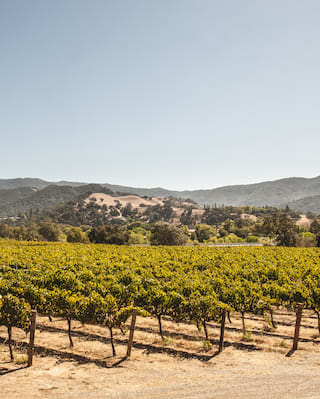 wine tours near Santa Barbara