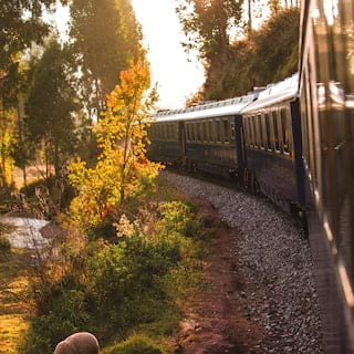 Blue train carriages curving round a track lined with colourful trees