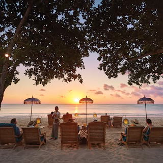 Three couples relaxing on sunbeds between two trees, facing sunset over the sea