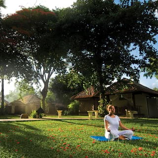 Lady perched on a lush green lawn in the lotus yoga pose at sunrise