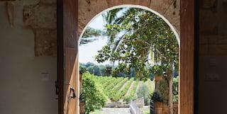 Winery in Mallorca