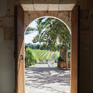 View through a rustic arched doorway of vineyards stretching into the distance