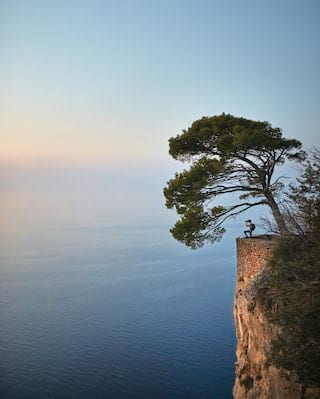 View from a distance of a photographer standing on a cliffside under a tree at sunrise