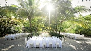 Courtyard with palms in the center and banquet tables in a U-shaped formation