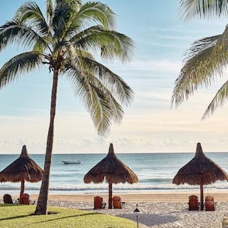 Three palm-thatch parasols above paired sunbeds on a sunny beach