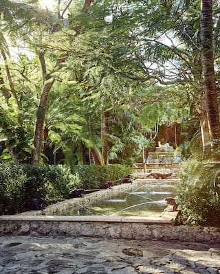 Hotel garden raised ponds surrounded by jungle foliage