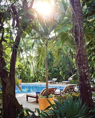 Shaded outdoor infinity hotel pool surrounded by sunbeds and jungle foliage