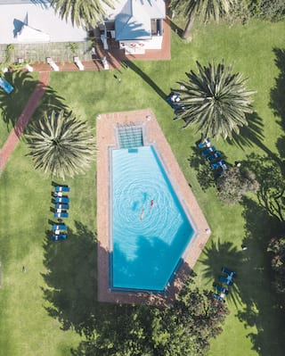 Birds-eye-view of an outdoor pool surrounded by palm trees and manicured lawns