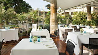 Outdoor restaurant terrace with polished wood decking dotted with tall palms