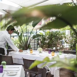 Waiter setting an outdoor table surrounded by lush palm foliage