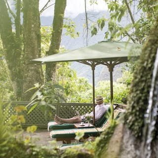 Man relaxing on a sunbed under a green parasol surrounded by tropical gardens