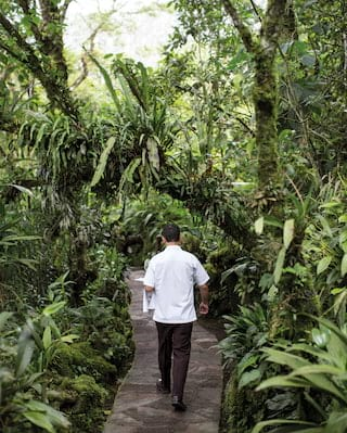 Waiter carrying a tray along a stone path surrounded by tropical foliage