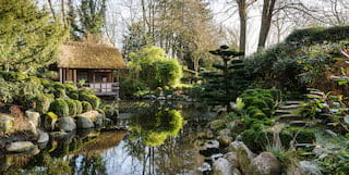 The Japanese Garden at Belmond Le Manoir aux Quat'Saisons