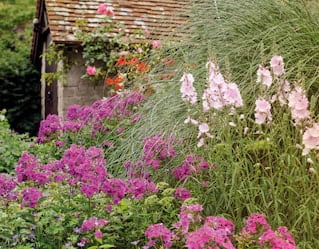 Garden in bloom at Belmond Le Manoir aux Quat'Saisons, hotel in Oxfordshire