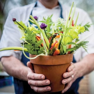 Chef holding a plant pot filled with fresh vegetables and flowers