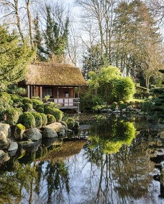 Japanese Garden Course