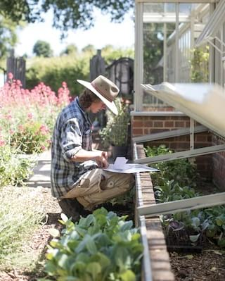 Gardener kneeling beside a raised flower bed next to a greenhouse