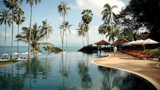 Infinity pool surrounded by sunbeds and palms overlooking a sunny beach